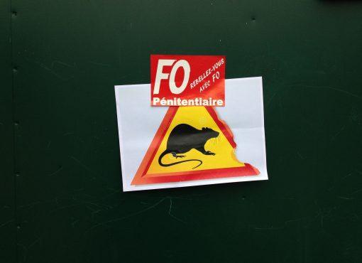 La maison d'arrêt de Fresnes, infestée par les rats : l'OIP saisit la justice