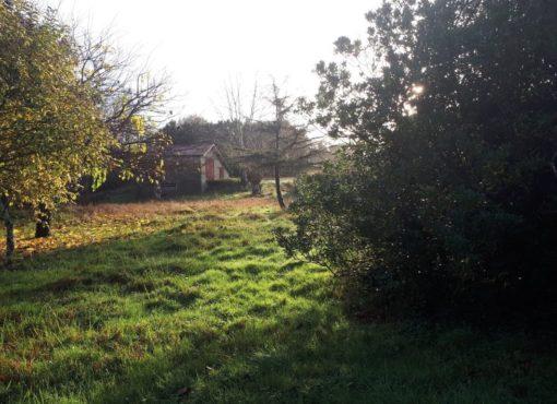 Une ferme de réinsertion dédiée aux femmes